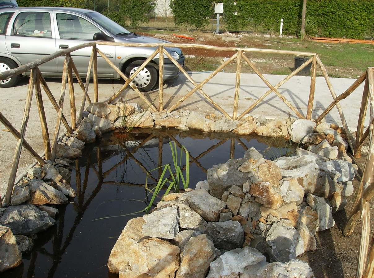 Piante acquatiche vivaio del golfo for Pesci per laghetti esterni