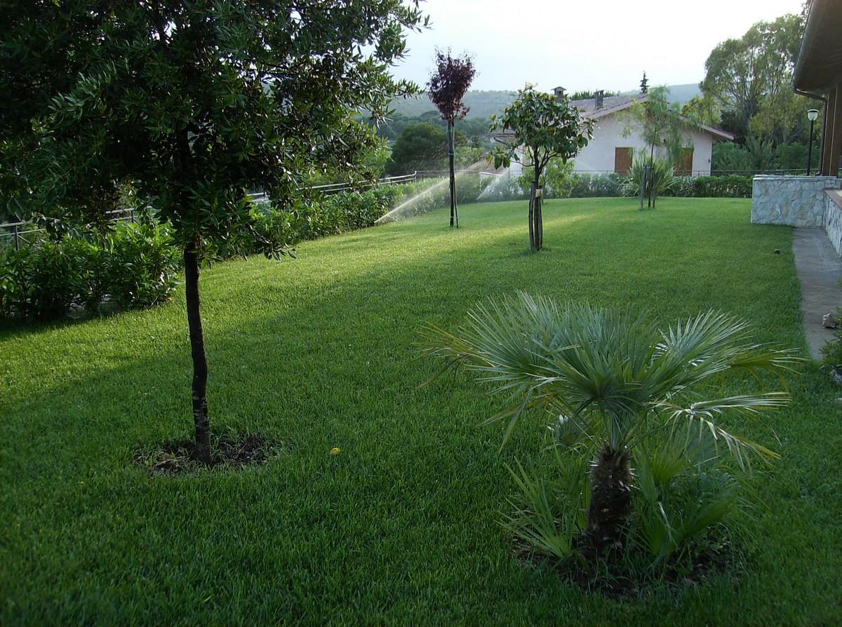 Una splendida villa uno splendido giardino vivaio del for Festuca prato